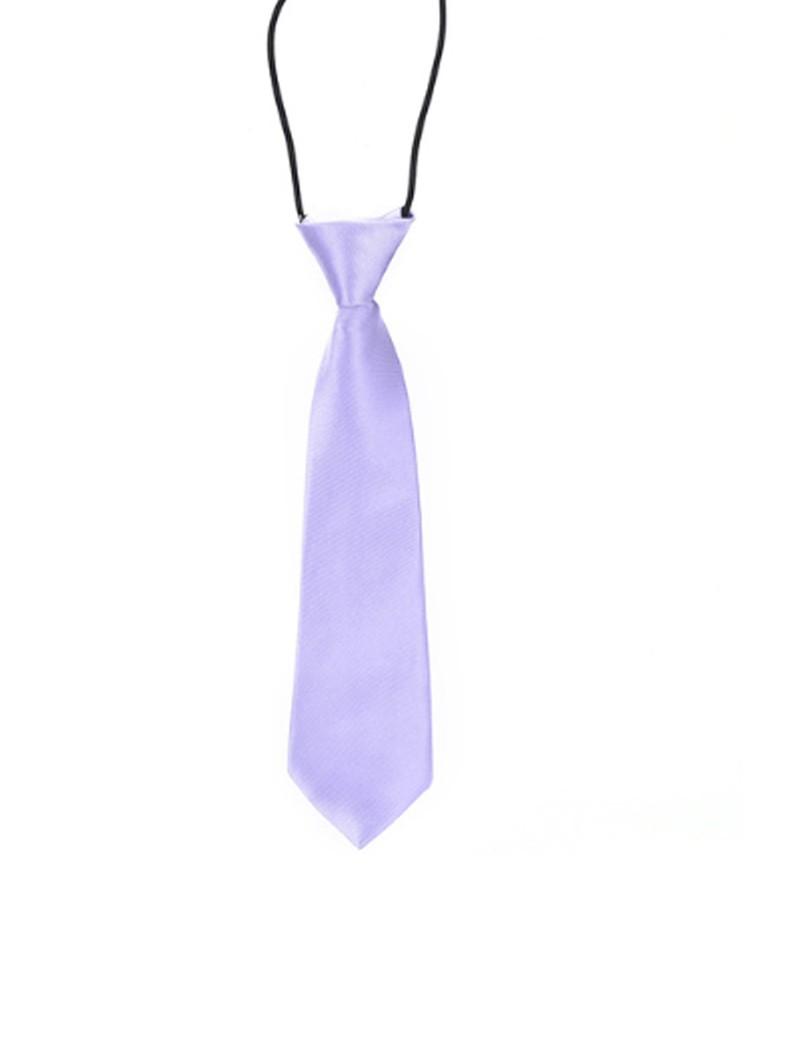 Bruidsjonkers stropdas in de kleur paars