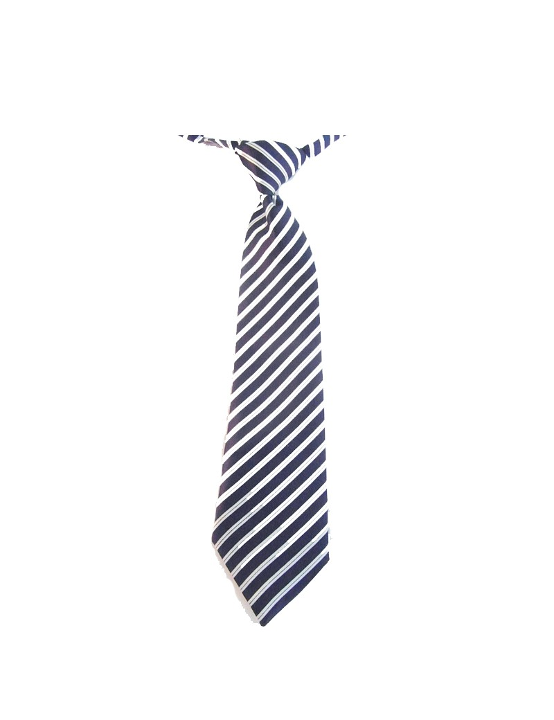 bruidsjonker stropdas in de kleur blauw wit gestreept